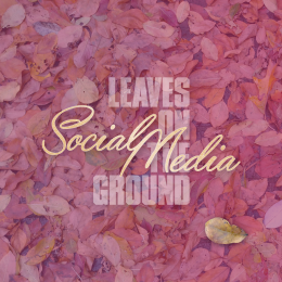 leaves-on-the-ground-social-media